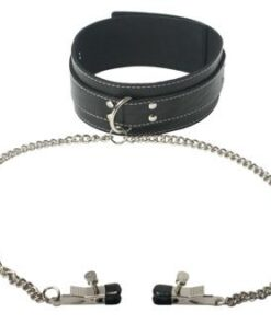 Coveted Collar And Clamp Union